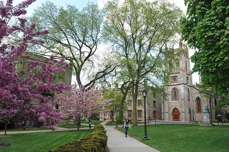 Fordham University Rose Hill Campus New York. Oh the nostalgia. My old university.