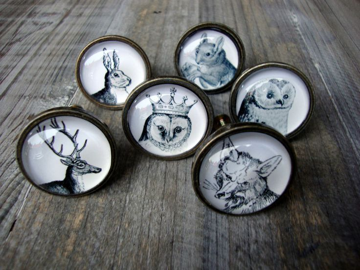 Details About Woodland Animal Drawer Knobs Brass Effect