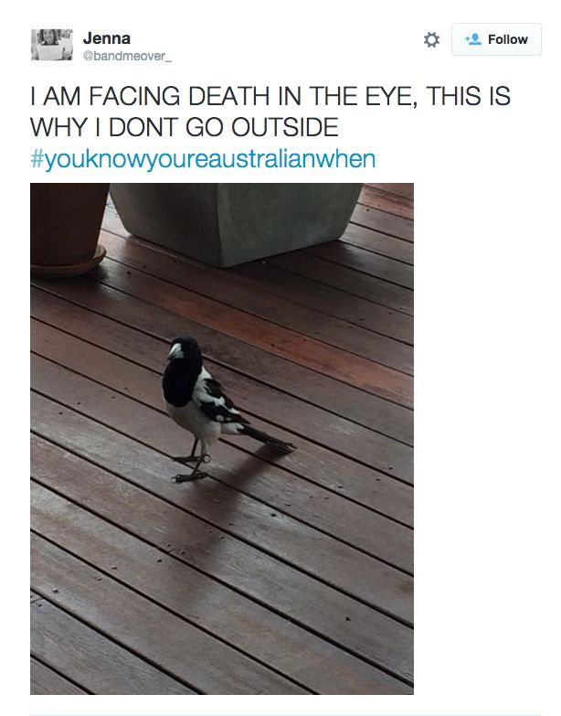 This real life horror story. | 29 Photos Non-Australians Will Just Never Understand