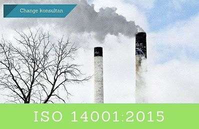 ISO 14001 EMS Services