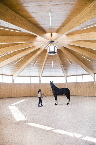 An indoor lounging ring/roundpen is certainly a luxury but it helps one get through the winter months without getting bucked off!  This ones for Jill
