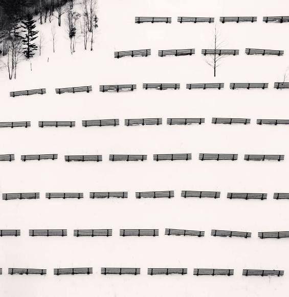 Michael Kenna - Fifty Fences, Taisetsu, Hokkaido, Japan. 2004