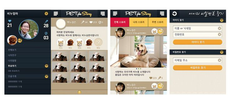 펫플스토리 모바일 App. 런칭을 위한 브랜드 네이밍 진단, BI 및 GUI 디자인 가이드 제안-2013.04.30