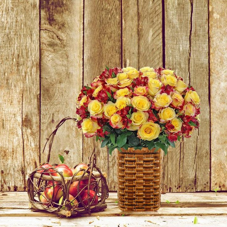 Autumn Jewels Bouquet - EbloomsDirect #alstroemeria,#Yellow,#red.#roses, #Promo, #Flowers #wedding, #events, #bouquets, #arrangement, #party, #fall, #summer, #spring, #harvest, #garden, #centerpieces, #autumn, #tropical,#recipes,#decor,#bridal,#floral,#DIY,#gift,,#online,#valentine's,#bride,#floral,#ideas,#blooms,#anniversary, #mothers #day, #baby, ,#gardening, ,#plants, #holidays, ,#fashion, #, #home, #decor, #USA, #Costco, #art, #Texas ,#design, #Sam's ,#bulk, #amazon, #style, #shopping