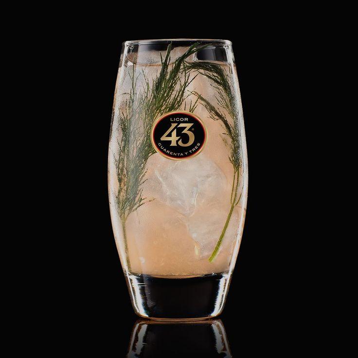 De Dill-icious 43 is een bruisende mix, die de scherpe citrus smaken van grapefruit en citroen combineert met aromatische kruiden.