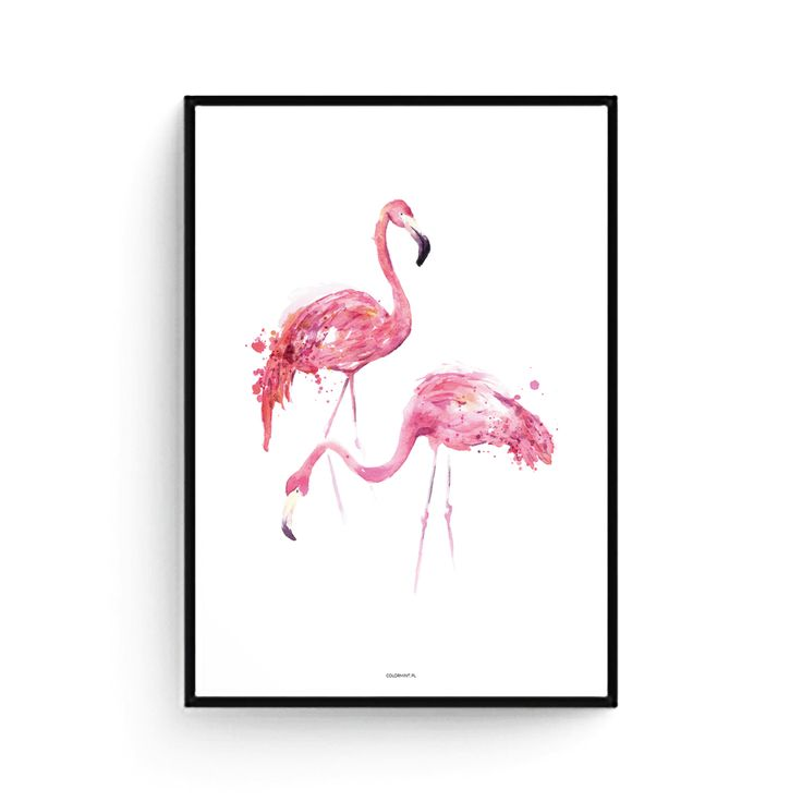 Flamingi_plakat_1.jpg
