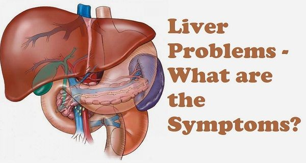 The liver is one of the most important organs in the human body. Filtering the blood is the main job of this organ. It also metabolizes drugs, detoxifies chemicals and makes proteins essential for blood clotting. Stressful living conditions, intoxicated environment, heavy drinking habits, chain smoking habits and poor diet can really harm your liver.…
