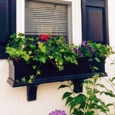 """Charleston"" black pvc window box on stucco home with matching black shutters.  The green really pops on black."