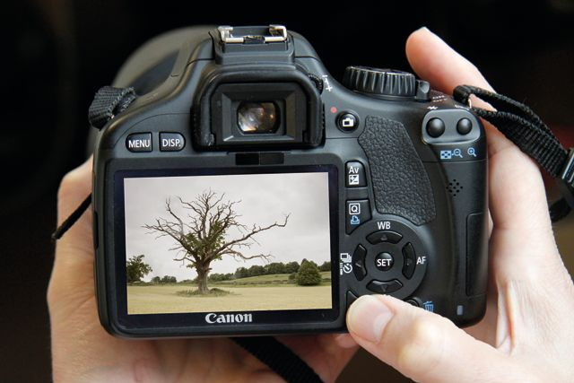 15 ways you can improve your photography in a day