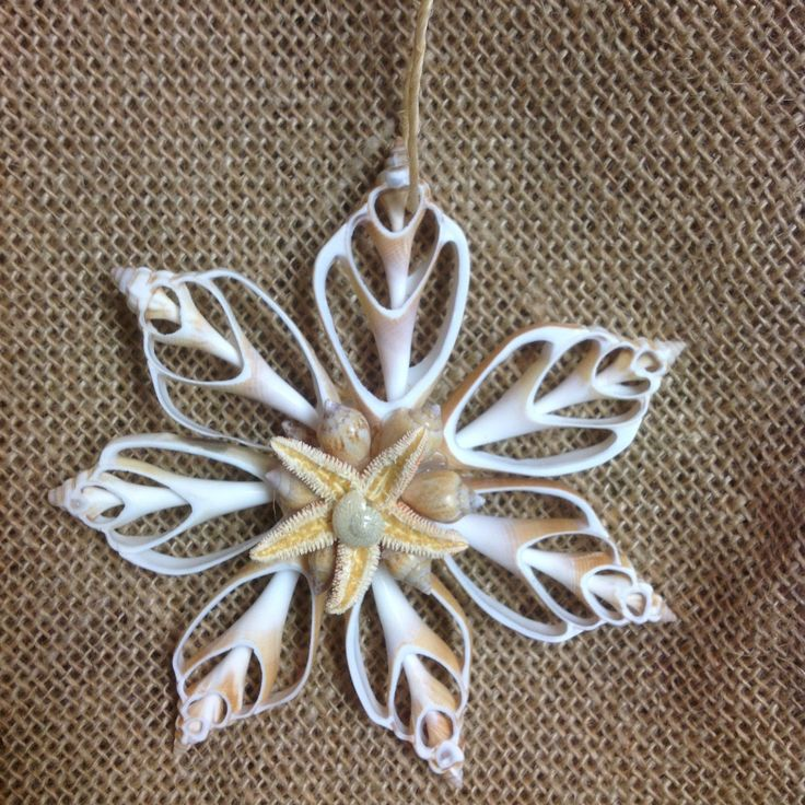 Natural Christmas 2 sided Sliced Shell and Starfish Ornament. This Seastar tree ornament is a perfect gift for anyone who loves Starfish. This ornament has 7 points on the star. ( 7 shells) Size appro