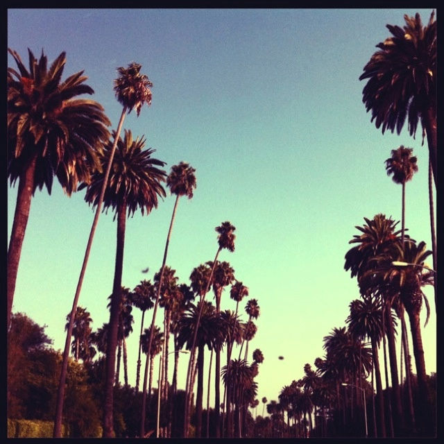 Beverly Hills Oh that California sky