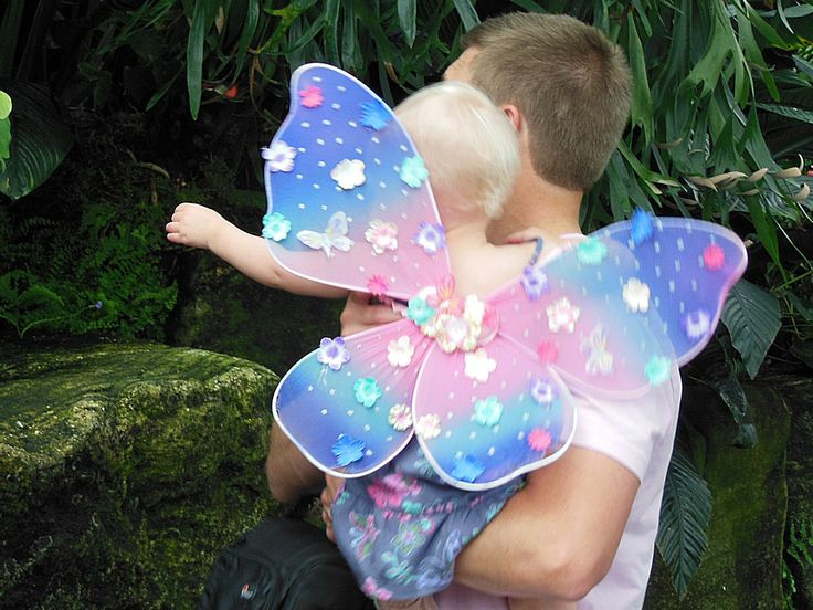 Butterfly Garden - Daddy and Precious Butterfly
