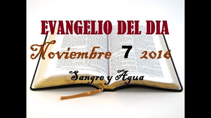 Evangelio del Dia- Lunes 7 de Noviembre 2016- Sangre y Agua