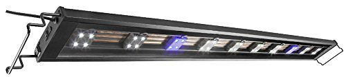 Elive Track Light LED Aquarium Fish Tank Hood Adjustable from 48-54 Inch Includes 8 White  2 Blue Pods Holds Up to 31 LED Pods For Sale https://birdhousesforoutside.info/elive-track-light-led-aquarium-fish-tank-hood-adjustable-from-48-54-inch-includes-8-white-2-blue-pods-holds-up-to-31-led-pods-for-sale/