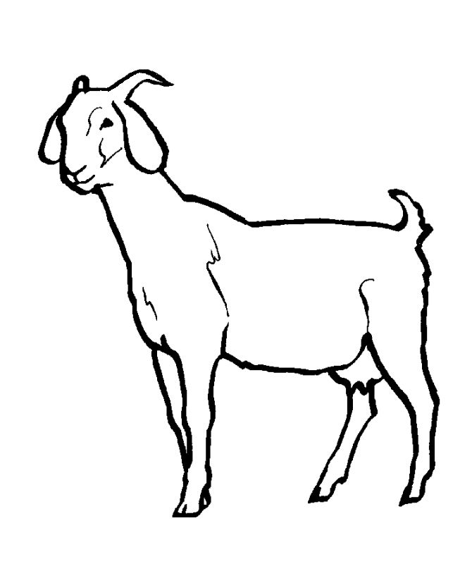 Download Goat Coloring Pages For Kids