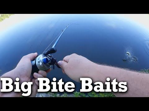 Bank Fishing for Bass - Big Bite Baits Coontail Worm from LTB - (More info on: https://1-W-W.COM/fishing/bank-fishing-for-bass-big-bite-baits-coontail-worm-from-ltb/)