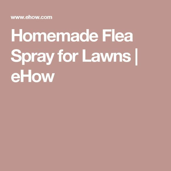 Homemade Flea Spray for Lawns | eHow