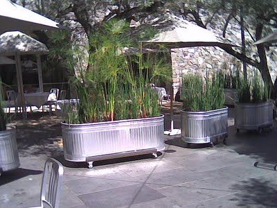 galvanized stock tank planters w/casters