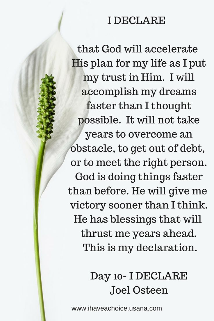 I Declare that God will accelerate His plan for my life...He has blessings that will thrust me years ahead. ---Joel Osteen