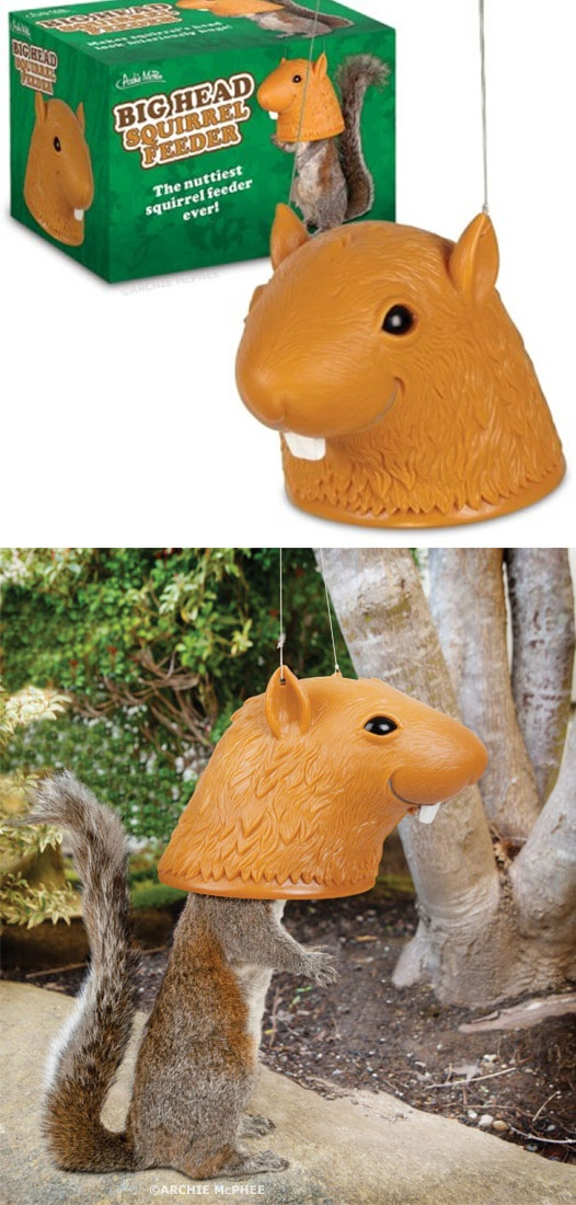 Big Head Squirrel Feeder... I want to get this for Tony!
