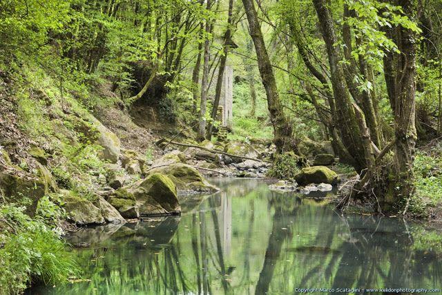 Scopri la Tuscia e la Maremma: Il mulino sul fosso Subissone (Torre Alfina)