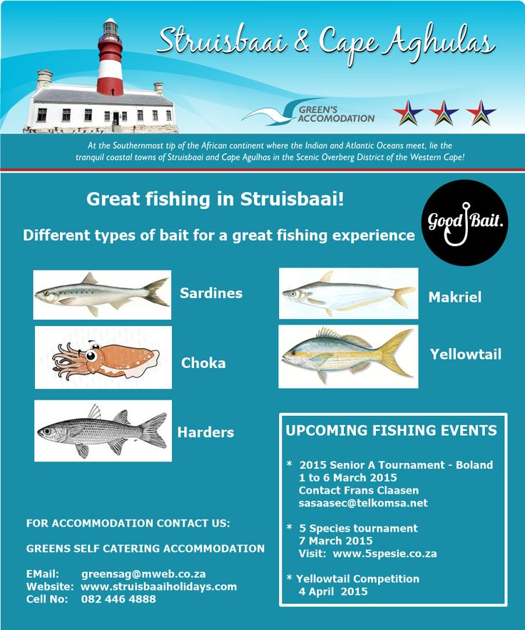 #FishingBait #Bait #FishingStruisbaai #TypesOfFish