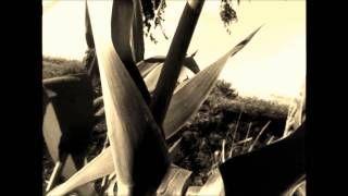 michał masłoń - YouTube