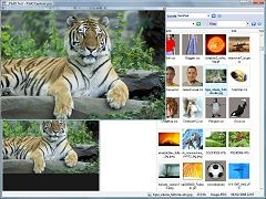 P3dO Explorer is a software for viewing and managing 3D Objects, & Digital Pictures with a simple Explorer-ish look and feel.  P3dO is also a major Poser 3D library manager.  P3dO stands for Photo 3D Exploration software.
