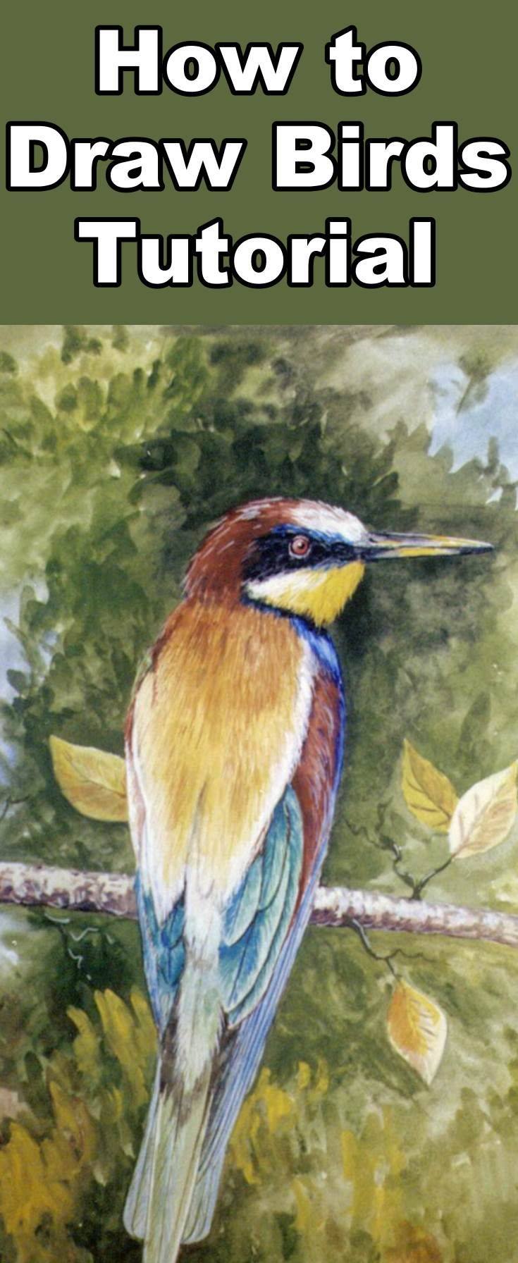 Learn how to draw birds with this pastel drawing lesson