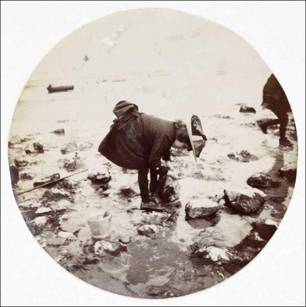 Kodak Picking Rocks, 1880-1890
