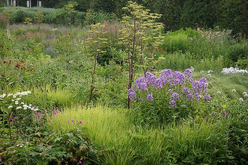 1000 Images About Piet Oudolf Privat Garden Hummelo