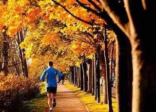 Блог о вашем здоровье: Как начать бегать. Правила и техника бега.