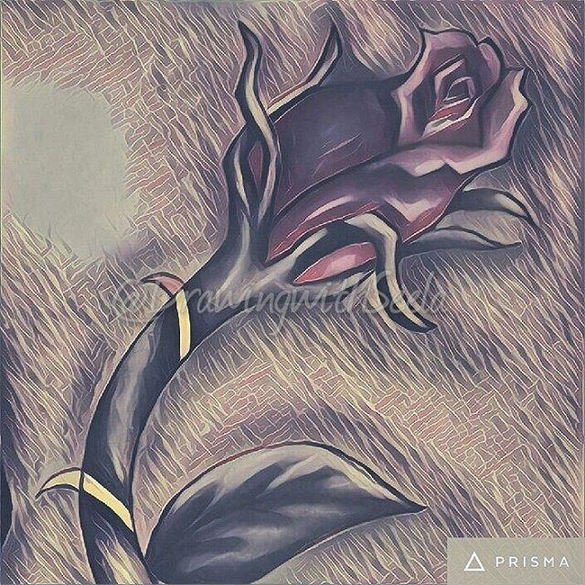"""The most beautiful Ruby Red"" - 3eb 🌹❤ #edit #newdesign #rose #newstuff #artwork #colour #art #artist #soul #design #skull #roses #tattoo #tattoodesign #instaart #instaartist #instalove #instagood #drawing #instago #instagram #prisma #work #fridaypost #friyay #friday #dreamy #insta #red #dark"