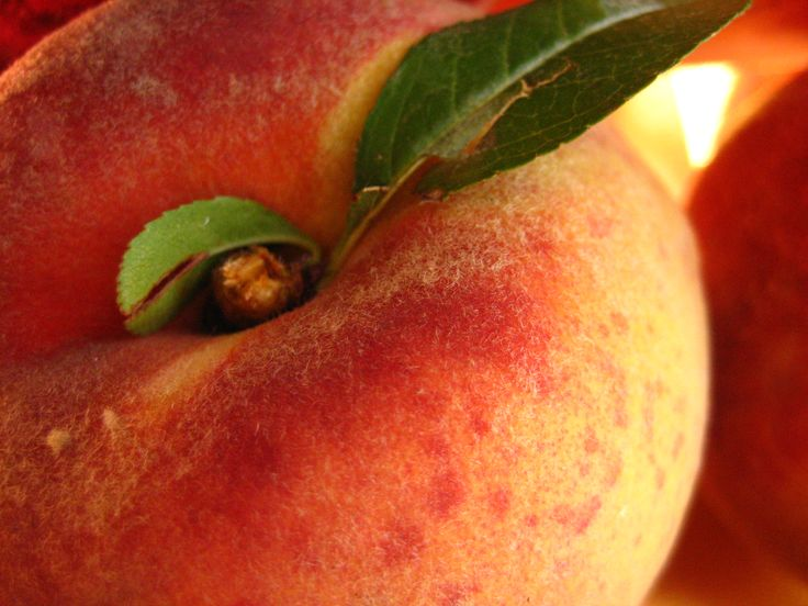 17 Best Images About Georgia Peaches On Pinterest – Migliori Pagine