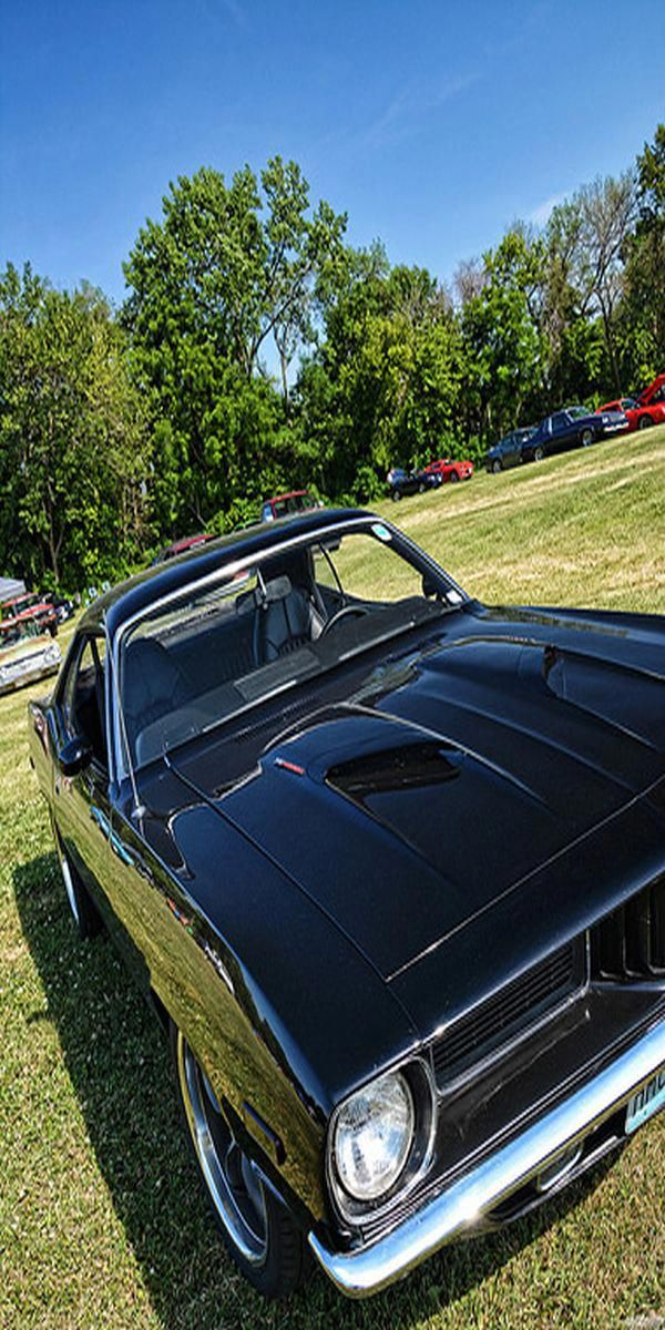 Project Muscle Cars For Sale Vintage Project Cars For Sale Click