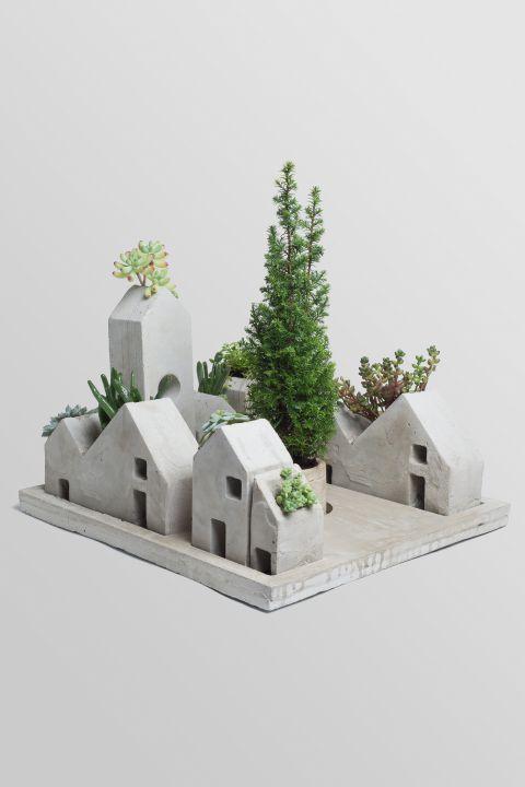 CRESC - ACOPERISURI VERZI, case ciment, plante suculente sau cactusi