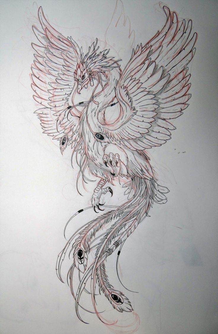 29 Amazing Phoenix Tattoo Ideas You Will Enjoy