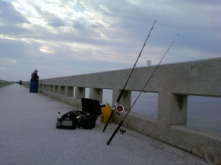 Fishing from the old 7 mile bridge in the florida keys for Florida keys bridge fishing