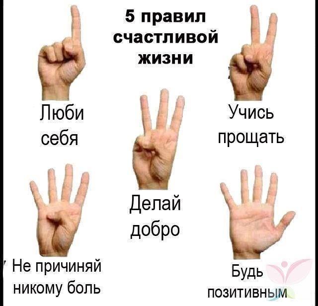 Пять правил счастливой жизни в одном фото | thePO.ST