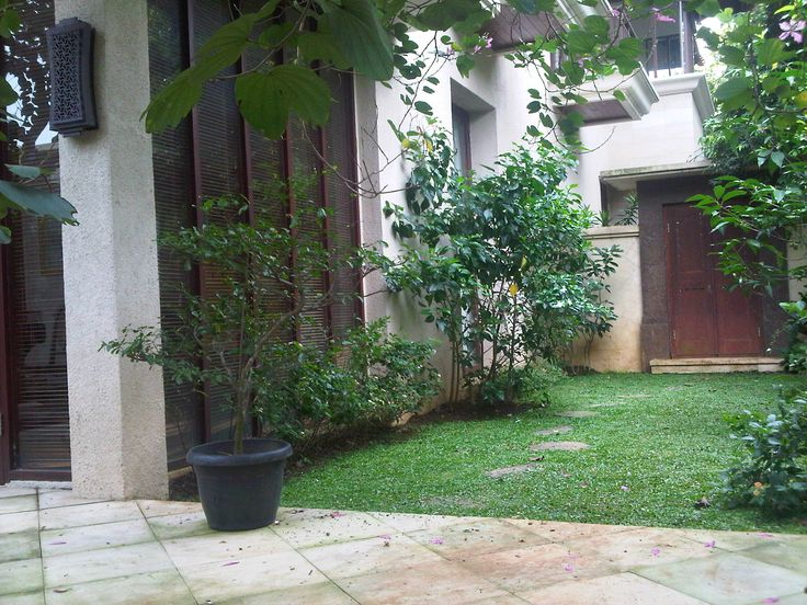 Small garden at our Main Bed Room Terrace