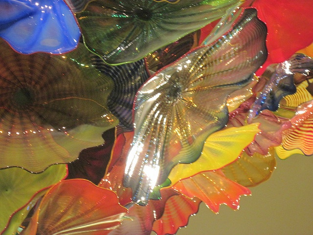 Dale Chihuly Chandelier, Mayo Clinic, Jacksonville, FL