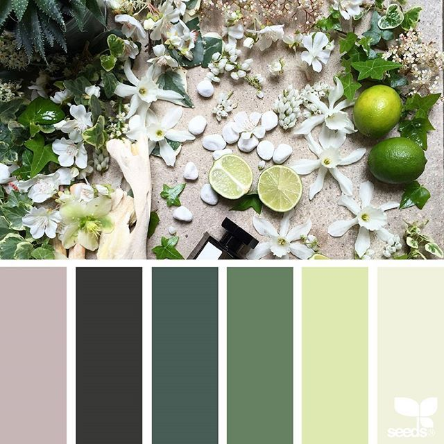 today's inspiration image for { arranged tones } is by @clangart ... thank you, Chantal, for another inspiring #SeedsColor image share!