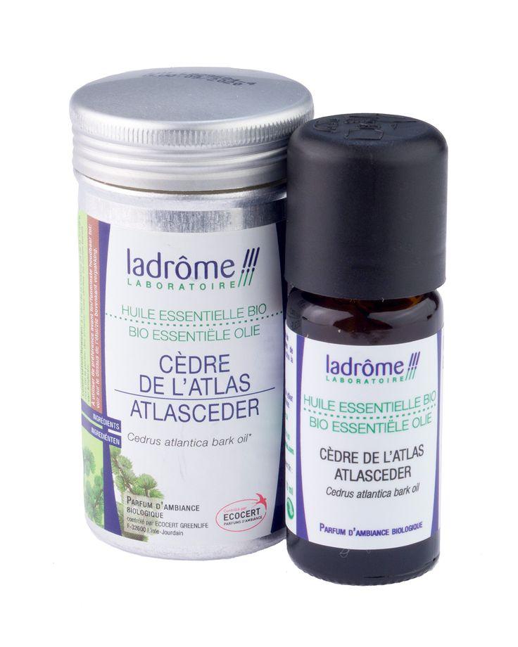 Etherische olie Cederhout stimuleert de haarzakjes en verlicht jeuk en droogheid. Heeft antibacteriële eigenschappen. Zuivert de lucht.