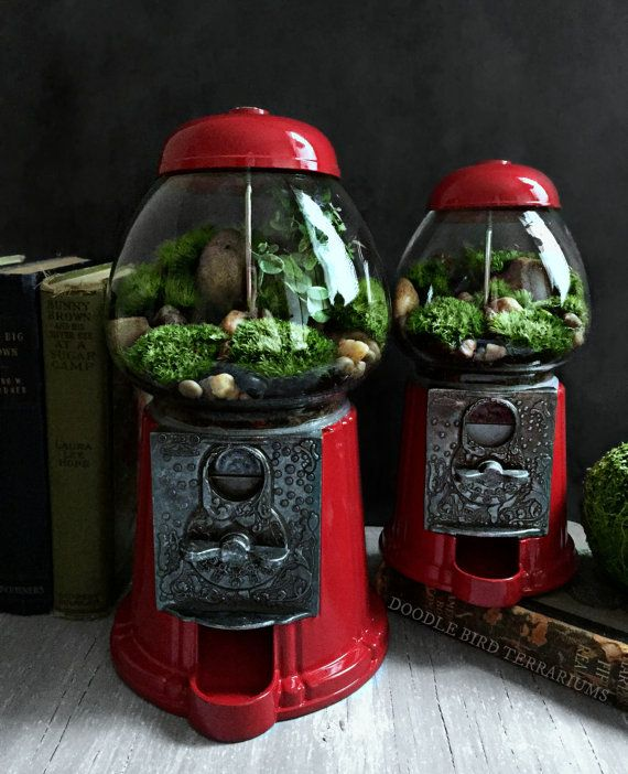 Terrarium / Carousel Gumball Machine Upcycled by DoodleBirdie