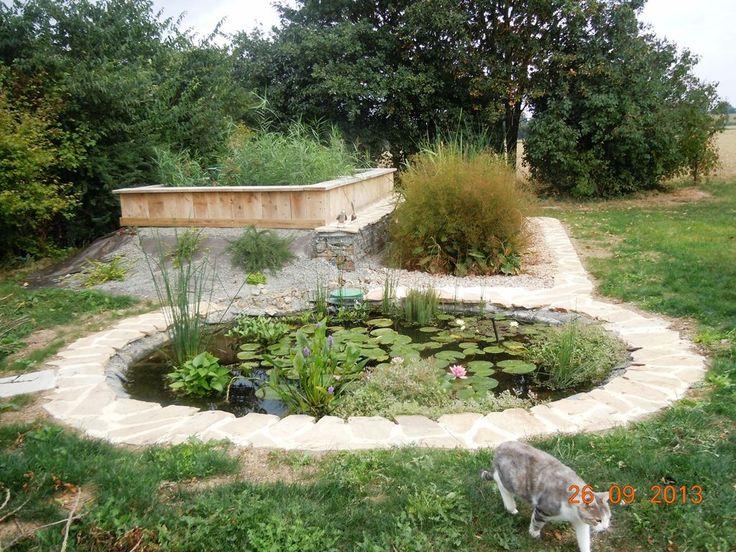 52 best Phytoepuration images on Pinterest White gardens - assainissement d une maison