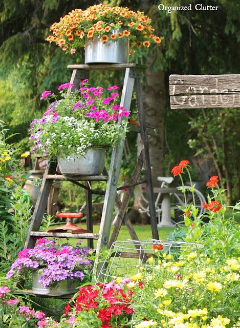 Use a wooden ladder as garden art in the flower beds this summer. They add much needed height to the garden and a place to display bird houses and planters.