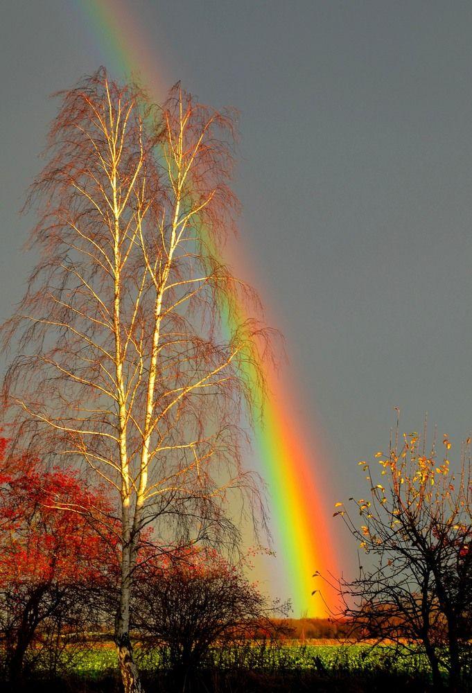 Die #Physik der #Erde ist faszinierend: Regenbogen bei Sonnenuntegang von Lutz Golli.