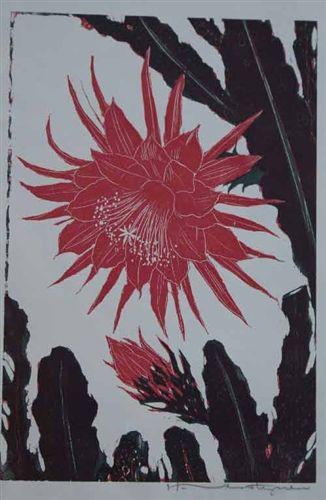 Verstijnen-H.-bloeiende-cactus.jpg (326×500)