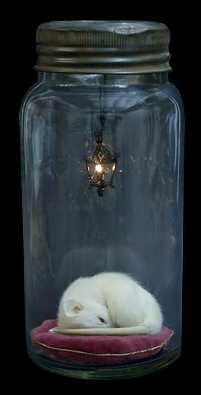 Artist Rachel Ann Stevenson combines taxidermy with sculpture in the sleeping mouse on a pillow with a real working miniature chandelier!