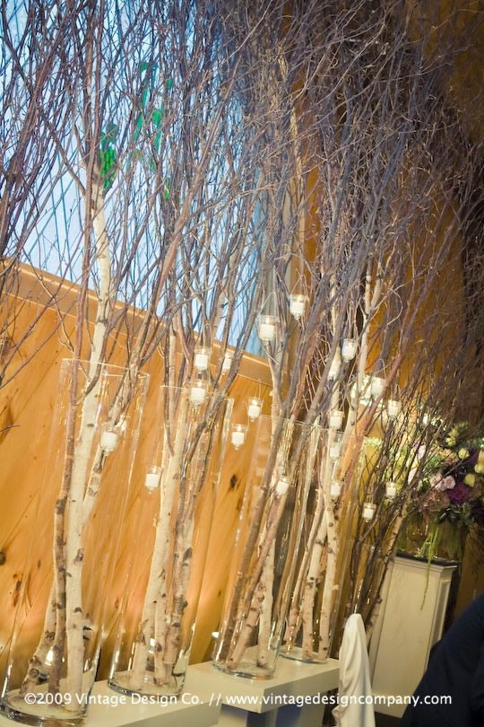 Tree branches create a beautiful fall background for woodland theme event
